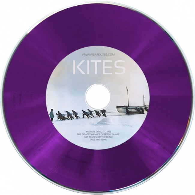 Blank 12cm Purple Vinyl Cd R 700mb Bulk Wrapped Retro